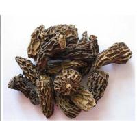 Buy cheap Dried Morel without stem from wholesalers
