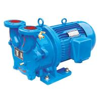 2BV2 Water Ring Vacuum Pump/Compressor