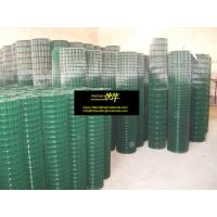 Buy cheap Welded wire mesh, PVC Coated Wire welded wire mesh, Galvanized Welded wire mesh from wholesalers