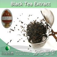 Wholesale Black Tea dry extract from china suppliers