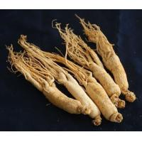 Buy cheap high quality american ginseng powder from wholesalers