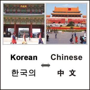 China Technical Translation for Written/Interpretation Translation on sale