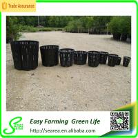 Buy cheap air pruning plant tree root developing containers aeration container plastic storage container from wholesalers