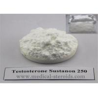 Buy cheap Sustanon 250 Steroids Increase Testosterone / Adult Human Growth Hormone from wholesalers