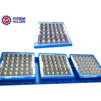Buy cheap Injection Molding Aluminum Multi Cavity Egg Tray Mold from wholesalers