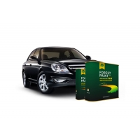 Buy cheap Forest Paint Quick Drying Auto Body Metal Filler , Deep Emerald Green / Flat Black Auto Paint from wholesalers
