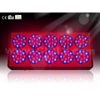 Buy cheap High Power 360W 550mA Dimable Professional LED Grow Light System10 Modules for Hydroponics from wholesalers