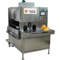 Buy cheap Compact Structure 5tons per day  Mango Processing Line Paste Processing Line Plant from wholesalers