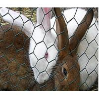 Quality Galvanized Farm Hexagonal Wire Netting rabbit wire mesh with Zinc Coated for sale