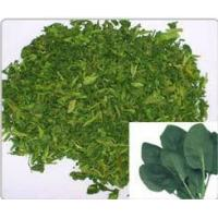 dehydrated  spinach flakes dehydrated vegetable dehydrated food food accessaries Manufactures