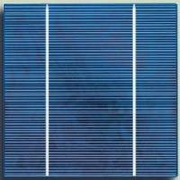 Buy cheap Solar Cell (Poly156x156mm) (TBCP156) from wholesalers
