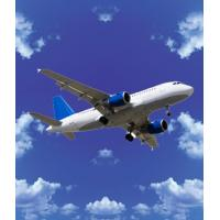 Buy cheap air fteight from china to UAE and The Middle East-curry from wholesalers