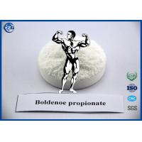 Buy cheap Muscle Building Steroids Hormone Powder , 99% Purity Boldenone Propionate product
