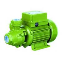 65l / Min Cast Iron Electric Water Transfer Pump Peripheral 0.75 Hp Water Pump Manufactures