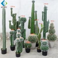 Wholesale Various Type Artificial Bonsai Tree , Fake Cactus Plant For Theme Attractions Decoration from china suppliers