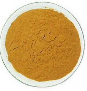 Wholesale Glycyrrhiza glabara/Licorice Extract/ 6%-98% UV/HPLC Glycyrrhizic Acid, Licorice Root Extract from china suppliers
