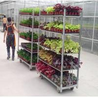 Buy cheap Greenhouse Pull Net Q235 PP Wheel CC Danish Plant Trolley from wholesalers