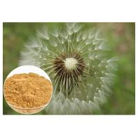 Buy cheap Brown powder Natural Anti Inflammatory Supplements Extracted from Dandelion Root from wholesalers