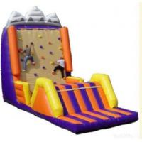 Buy cheap Inflatable Sport, Inflatable Climbing Wall, Inflatable Boat, Rodeo Bull from wholesalers