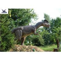 Wholesale Forest Decoration Handmade Dinosaur Garden Statue Life Size Real Dinosaur Models from china suppliers