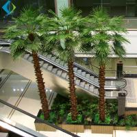 Wholesale Artificial Decorative Palm Trees Herringbone Type Eco - Friendly Easy Moving from china suppliers
