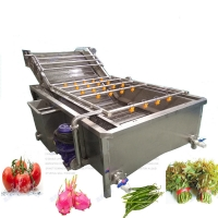 Buy cheap 300kg/H Vegetable Fruit Washer Bubble Washing Machine from wholesalers