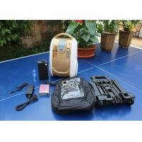 Wholesale Personal Electric Oxygen Concentrator 10L Automatic Alarm Function 245 X 181 X 365mm from china suppliers