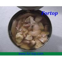 Canned Tuna Fish (CT-006) Manufactures