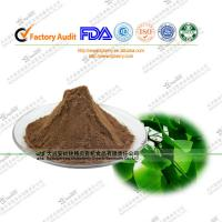 Buy cheap Ginkgo Biloba Extract Total Terpene Lacosides≥6% for blood bebefits from wholesalers