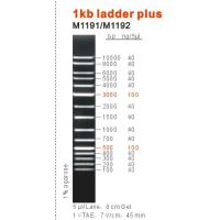Buy cheap 1kb dna ladder plus from wholesalers
