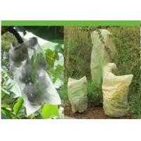 Garden, Agricultural Row Plant Frost Protection PP Spunbond Non Woven Fabric (10 - 200gsm)