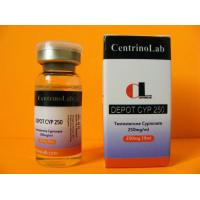 Buy cheap Anabolic Testosterone Steroids Testosterone Cypionate 250 mg/ml Injection Test Cyp CAS 58-20-8 from wholesalers