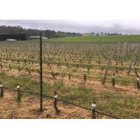 Buy cheap Orchard Plantations Metal Grape Vine Stakes With H Holes 50x34mm Frame Size from wholesalers