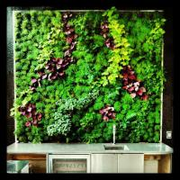Wholesale Indoor Fake Vertical Garden Hanging Plants Wall Panel with Quality Artificial Shrubs from china suppliers