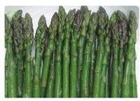 Wholesale Green asparagus from china suppliers