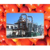 Wholesale Mango / Tomato Paste Production Line from china suppliers