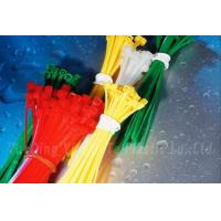 Wholesale Self Locking nylon cable tie from china suppliers