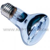 Wholesale Neodymium Spot lamp 35W from china suppliers