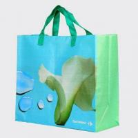 PP woven promotion shopping bags PW1001