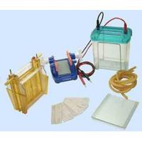 Wholesale Electrophoresis cell from china suppliers
