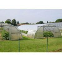 Wholesale #APH-00008 - Plastic films serve for agricultural production from china suppliers