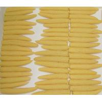 Buy cheap Canned Baby corn from wholesalers