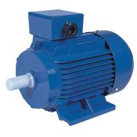 China Y2 SERIES THREE-PHASE ASYNCHRONOUS INDUCTION MOTORS on sale