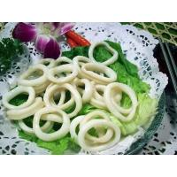 Wholesale Squid ring from china suppliers