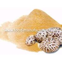 Freeze Dried Mushroom Freeze Dried Shiitake Powder