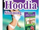 China P57 Hoodia Cactus Slimming Capsule - The Effective Herbal Weight Loss Product(KZ-SC004) on sale