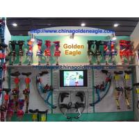 Wholesale What is Skyrunner ? from china suppliers
