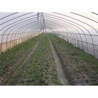 Agricultural greenhouse film Manufactures