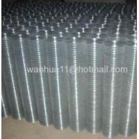 Buy cheap Hot Dipped Galvanized Welded Meshes hot dip galvanized welded wire mesh from wholesalers