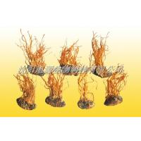Buy cheap Cordyceps Liquid training base Bacteria a treasure (Cordyceps) fruiting bodies from wholesalers